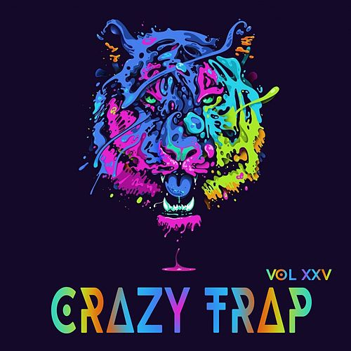 Crazy Trap Vol.25 by Various