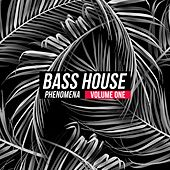 Bass House Phenomena, Vol. 1 by Various Artists