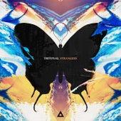 Strangers by Tritonal