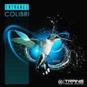 Colibri by Entrance