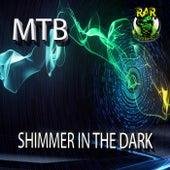 Shimmer In The Dark by M.T.B.