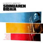 Soinuaren Bidaia by Various Artists