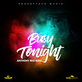Busy Tonight by Anthony Red Rose