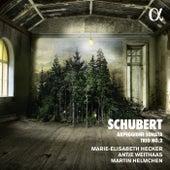 Schubert: Piano Trio No. 2 in E-Flat Major, D. 929 & Arpeggione Sonata in A Minor, D. 821 by Various Artists