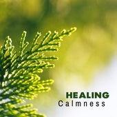 Healing Calmness – Nature Music, Relaxing Sounds of Water, Birds, Restful Music, Zen by Nature Sounds (1)