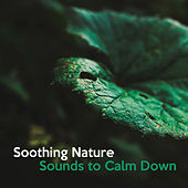 Soothing Nature Sounds to Calm Down – Peaceful Nature Waves, Spiritual Journey, Inner Calmness, Stress Free, New Age Music by Nature Sounds for Sleep and Relaxation
