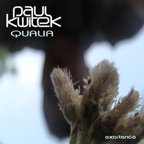 Qualia by Paul Kwitek