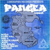Pangea Riddim by Various Artists