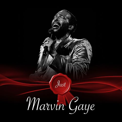 Just - Marvin Gaye de Marvin Gaye