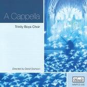 A Cappella by David Swinson