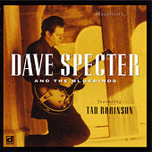 Play & Download Blueplicity by Dave Specter | Napster