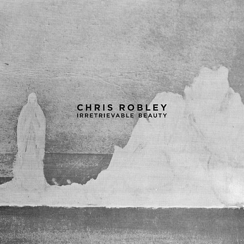 Irretrievable Beauty by Chris Robley