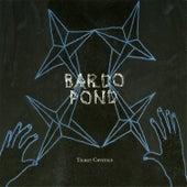 Ticket Crystals by Bardo Pond