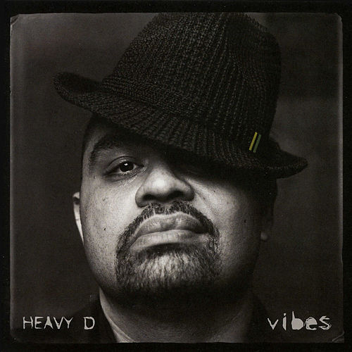 Vibes by Heavy D
