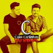 Vou Vivendo by Caio e Carlinhos