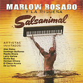 Salsanimal by Various Artists