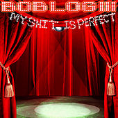 My Shit is Perfect by Bob Log III