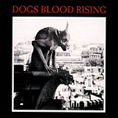 Play & Download Dogs Blood Rising by Current 93 | Napster