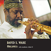 Organica (Solo Saxophones, Volume 2) by David S. Ware