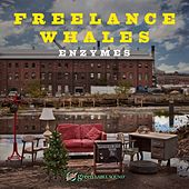 Enzymes by Freelance Whales