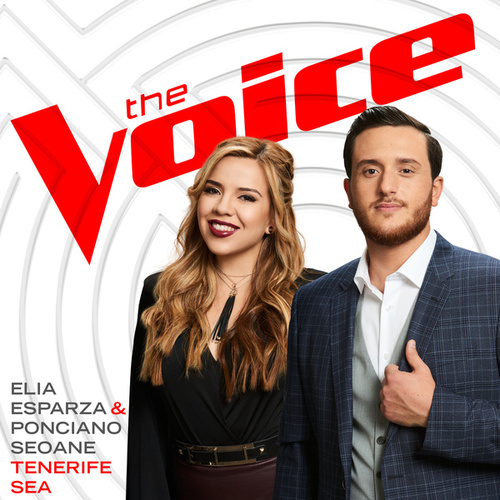 Tenerife Sea (The Voice Performance) de Ponciano Seoane
