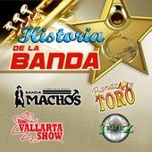 Historia De La Banda by Various Artists