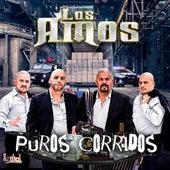 Puros Corridos by Los Amos