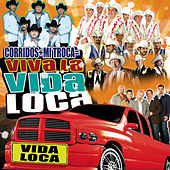 Viva La Vida Loca by Various Artists