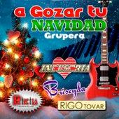 A Gozar Tu Navidad Grupera by Various Artists