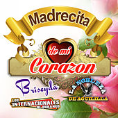 Madrecita De Mi Corazon by Various Artists