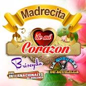 Madrecita De Mi Corazon by Various Artists