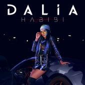 Habibi by Dalia
