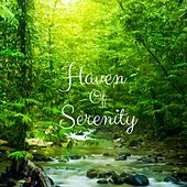 Haven of Serenity by Nature Sounds