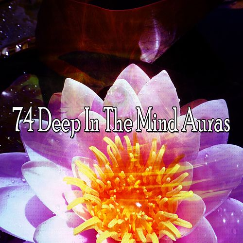 74 Deep In The Mind Auras de Deep Sleep Meditation