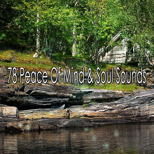 78 Peace Of Mind & Soul Sounds de Lullabies for Deep Meditation