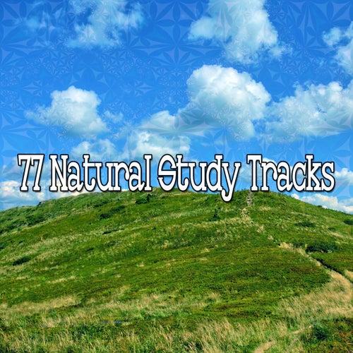 77 Natural Study Tracks von Classical Study Music (1)