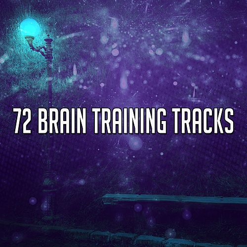 72 Brain Training Tracks von Classical Study Music (1)