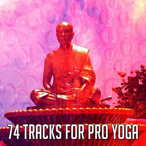 74 Tracks For Pro Yoga by Yoga Music