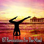 67 Revolutions For The Mind by Sounds of Nature Relaxation