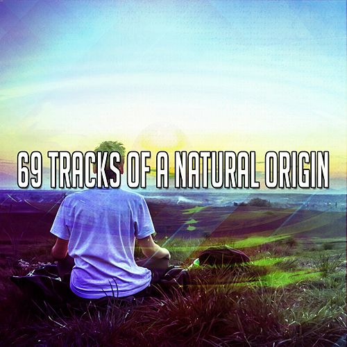 69 Tracks Of A Natural Origin by Meditation Music Zone