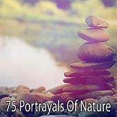 75 Portrayals Of Nature by Zen Meditate