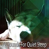 72 Sounds For Quiet Sleep by Bedtime Baby