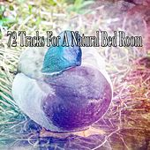 72 Tracks For A Natural Bed Room by Bedtime Baby