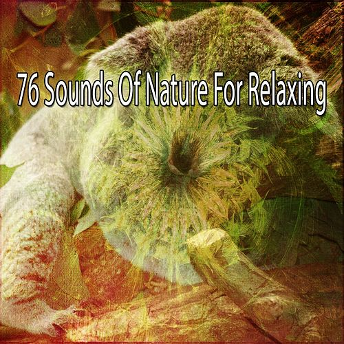 76 Sounds Of Nature For Relaxing de The Rest