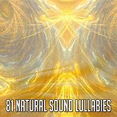 81 Natural Sound Lullabies by Lullaby Land