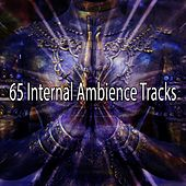 65 Internal Ambience Tracks by Sounds of Nature Relaxation