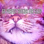68 Perfect Sounds For Sleep de Dormir