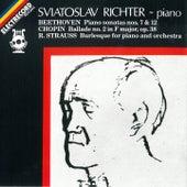 Sviatoslav Richter de Various Artists
