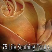 75 Life Soothing Tracks by S.P.A