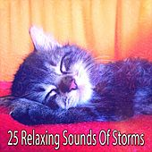 25 Relaxing Sounds Of Storms by Relaxing Rain Sounds